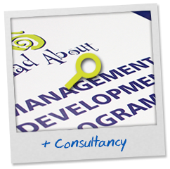 solution-consultancy